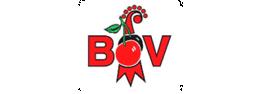 bov-bl-logo_259